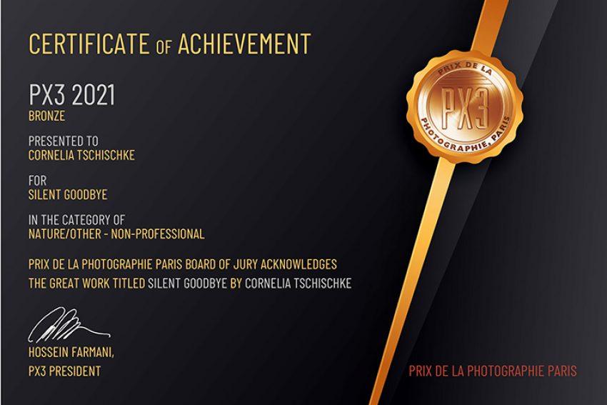 px3_paris_certificate